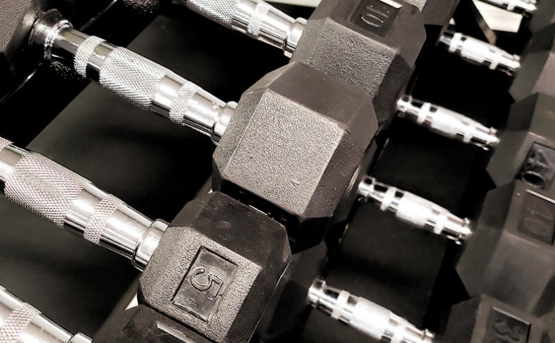 row of barbells stacked in fitness center